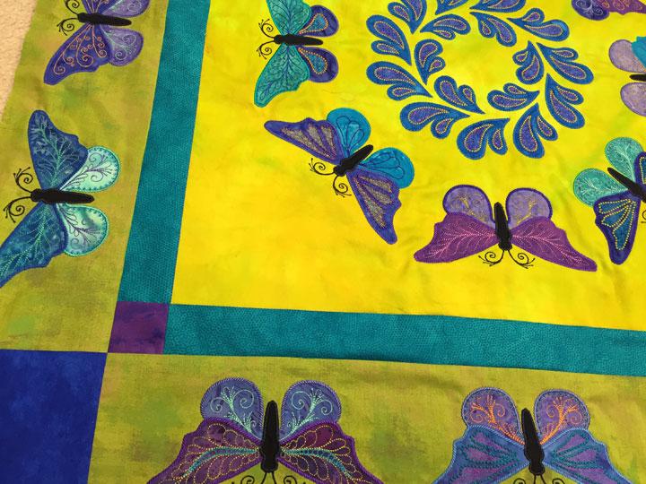 butterflies-tangential-shot