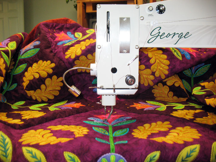 george-with-quilt-on-board