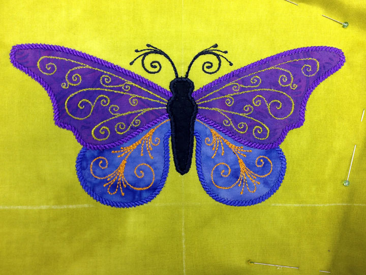 butterfly-1C